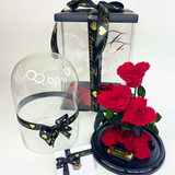 Limited Edition Valentine's Day Bellissimo Glass Dome - Preserved Heart Roses