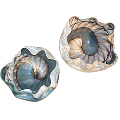 Large-Pair-Blue-Cream-Mother-of-Pearl-Murano-Glass-Iridescent-Wavy-Bowls