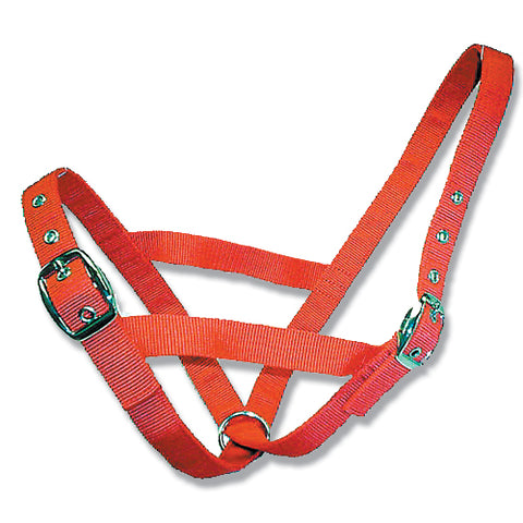 Cattle Halter Webbing