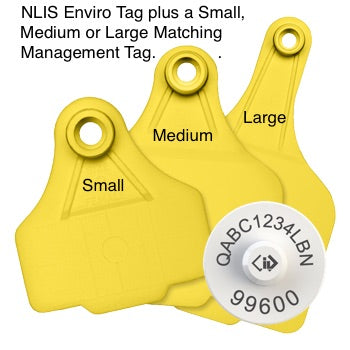 Cattle NLIS Tag & Matching Management Tag (SA Levy)