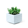 Concrete Planter Small, Grid Pattern