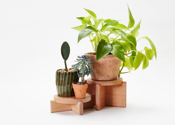 Simple wood plant pedestals set of two with high and low for plants, decor, and entertaining by Areaware