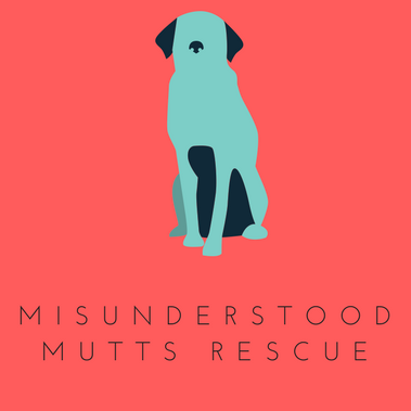 Animal Rescue Review #12 - Misunderstood Mutts