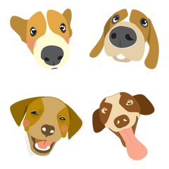 Dog Personlity Types Faces