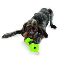 Orbee Bone - Moderate Chewy Bone - Minty and 100% Recyclable