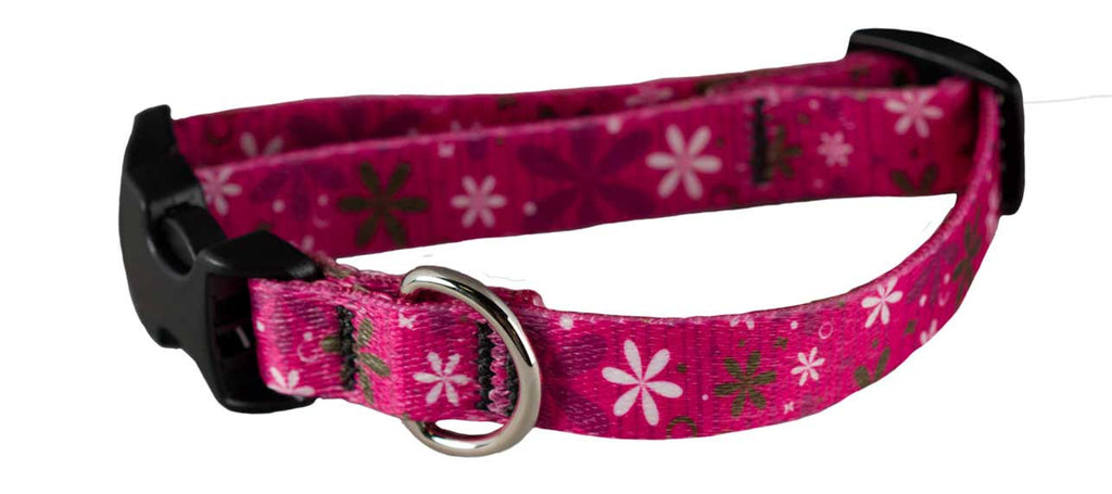 Ecoweave Pink Retro Flowers Collar for Small Dogs