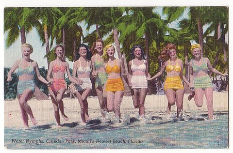 Crandon Park Post Card