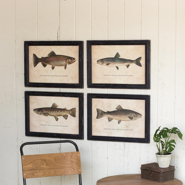 Set of Four Trout Prints Under Glass