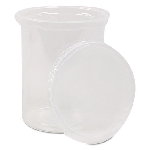 Deli Containers and Lids, 24 oz, Clear, 250/Carton