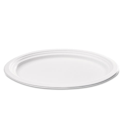 Compostable Sugarcane Bagasse Oval Plate, 9 x 6.5, White, 125/Pack
