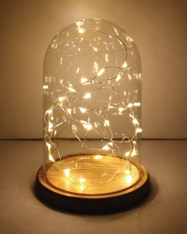 POSTalk Glass Bell Jar with LED Star Light (AF05) - POSTalk