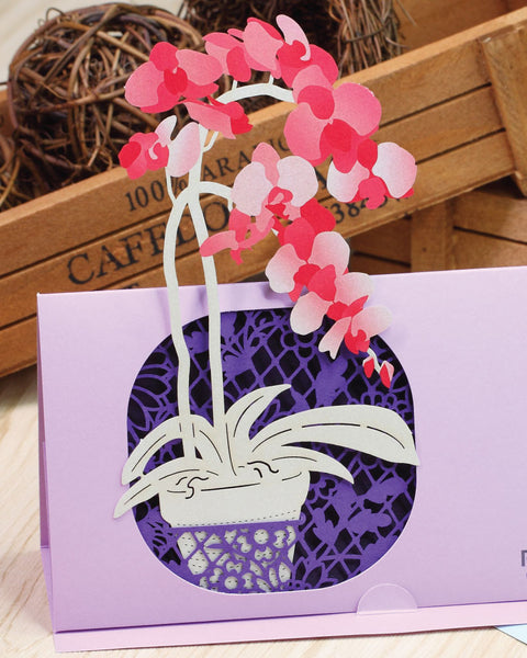 Orchid POP-UP Greeting Card - Fleuriste Series