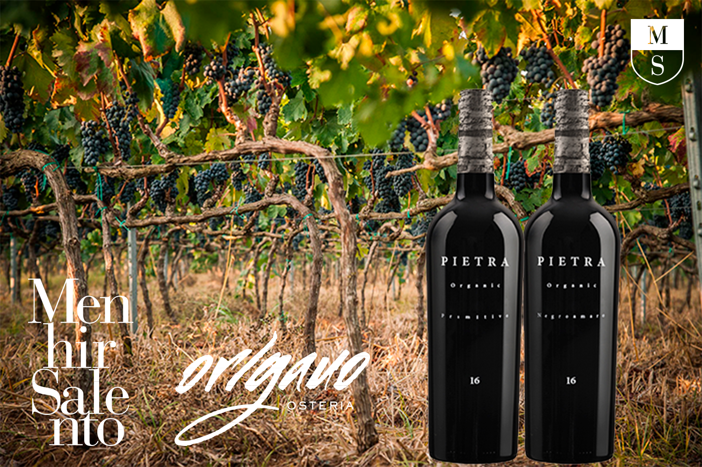 Organic wines from Italy with love...