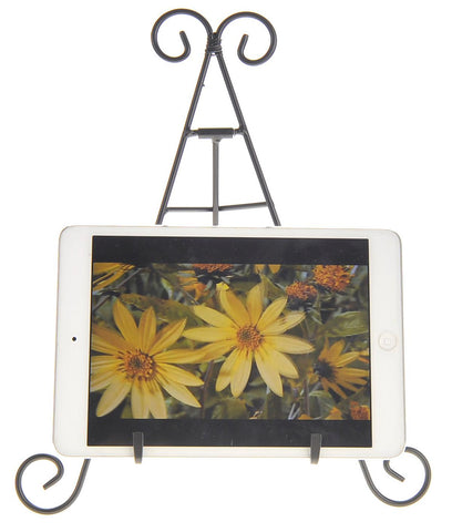 "12"" Tall Black Iron Display Stand Holds"