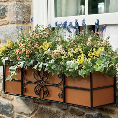 "30"" Quatrefoil Window Box"