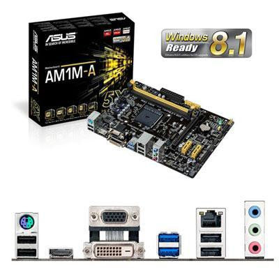 Am1m A Motherboard