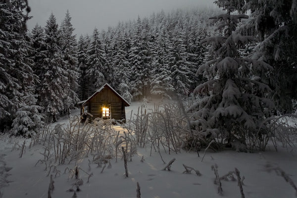 Snow cabin in the forrest