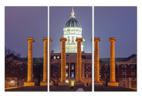 MIZZOU Columns 3 pc Canvas Wall Art