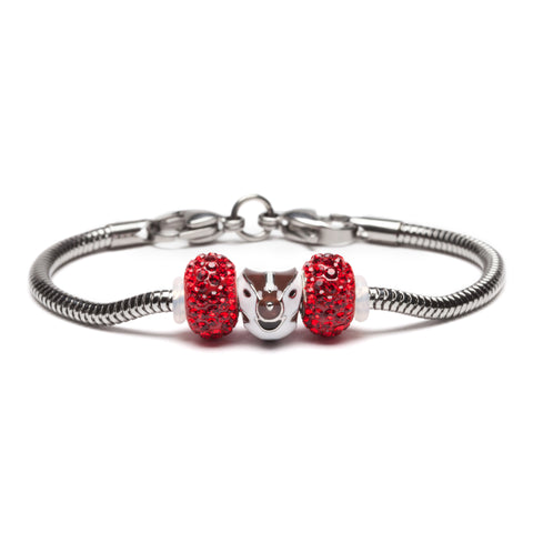 Wisconsin Badgers Bead Charm Bracelet Jewelry