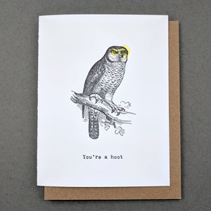 You're a hoot : owl gifts