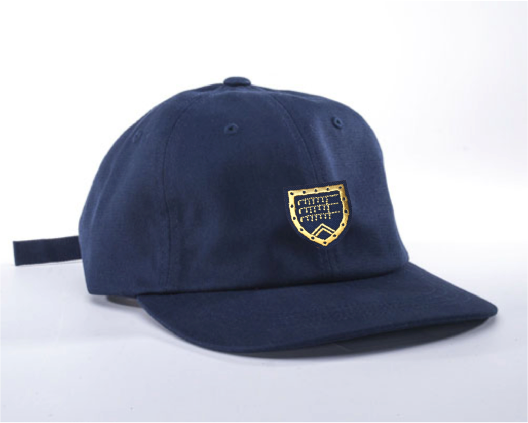Dad Hat in navy with Shapland crest