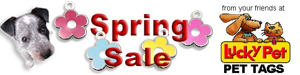 spring sale continues