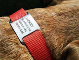 Slide-On Collar Tag
