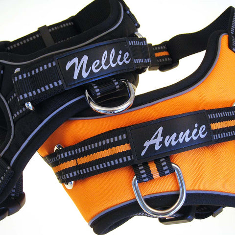 Personalized Sport Harness for Dogs
