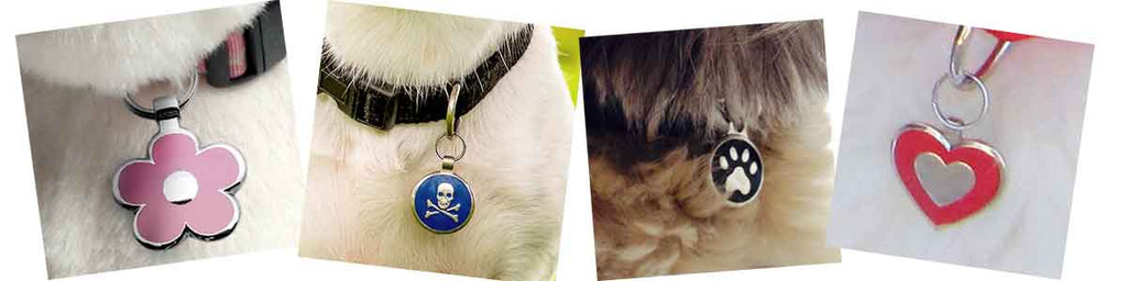 closeup of tags on pets: a pink flower, a lue skull & cross bones, a black paw print, and a red heart shape