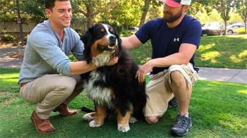 Two men and a large dog.
