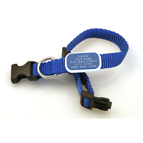 blue adjustable collar with a blue rectangular plastic tag attached flat to the collar