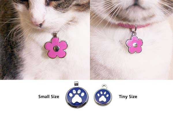 Cat wearing a small size jewelry tag next to another cat wearing a tiny jewelry tag for comparison.