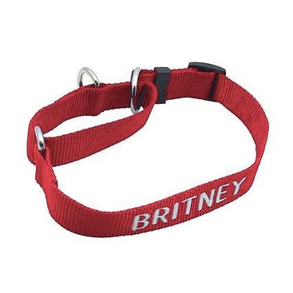 Red nylon martingale collar featuring pet name embroidered.