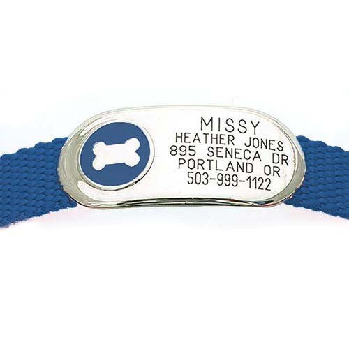 Oblong metal tag attached flat on collar, featuring engraving and a metal bone design surrounded by blue enamel.