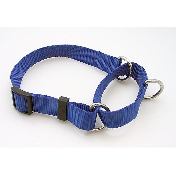 Martingale Collar,  - Lucky Pet