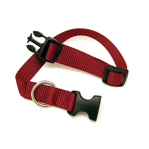 Adjustable Dog Collars