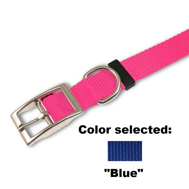 "Traditional Dog Collar - 1"" Width,  - Lucky Pet"