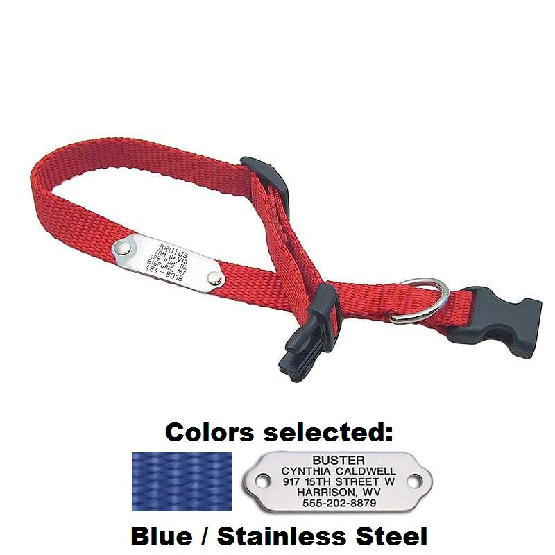 Blue adjustable collar with engraved stainless steel tag attached flat on collar.