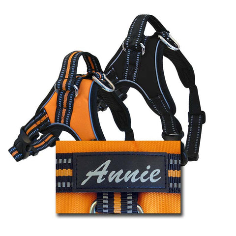 Personalized Sport Harness for Dogs,  - Lucky Pet