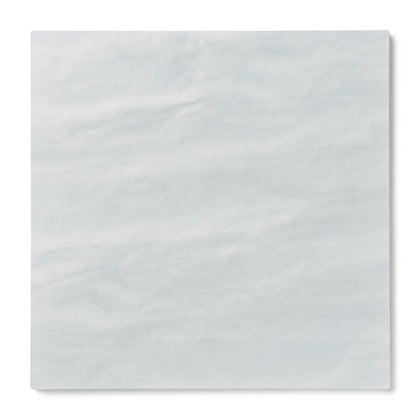 Light Blue Pearl Acrylic Plexiglass Sheet, color L-412