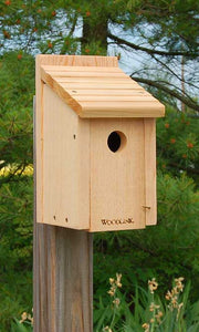 Woodlink Bluebird Houses, Pack of 4
