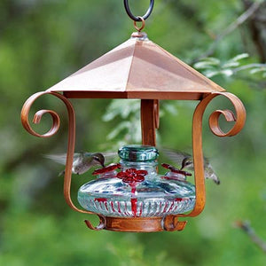 Parasol Bloom Shelter Hummingbird Feeder, Clear, 16 oz.