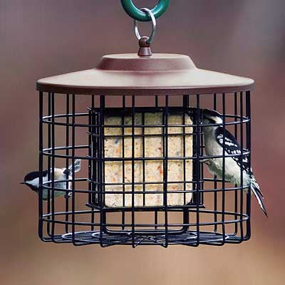 Stokes Select Caged Double Suet Feeder, Brown