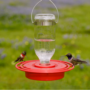 Glass Hummingbird Feeder, 8 oz. by Best Feeders