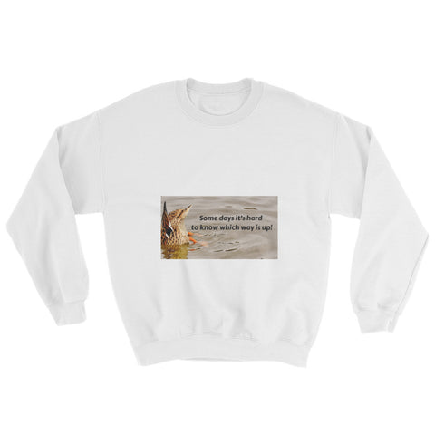 Don't Know Which Way Is Up Sweatshirt