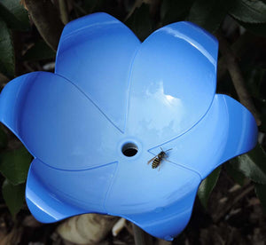Bee landing on Bluebell Emily root waterer decorative head