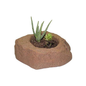 DekoRRa Autumn Bluff colored Planter Faux Rock with aloha planted in it
