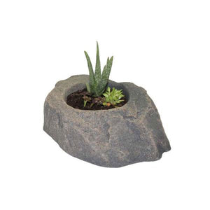 DekoRRa Fieldstone colored Planter Faux Rock with aloha planted in it