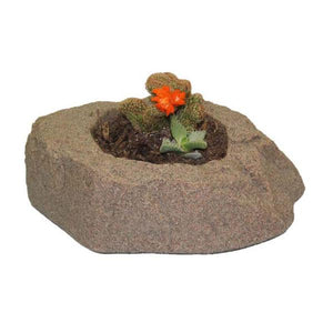 DekoRRa Riverbed colored Planter Faux Rock with cactus planted in it