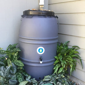 Unpainted Rain Barrel